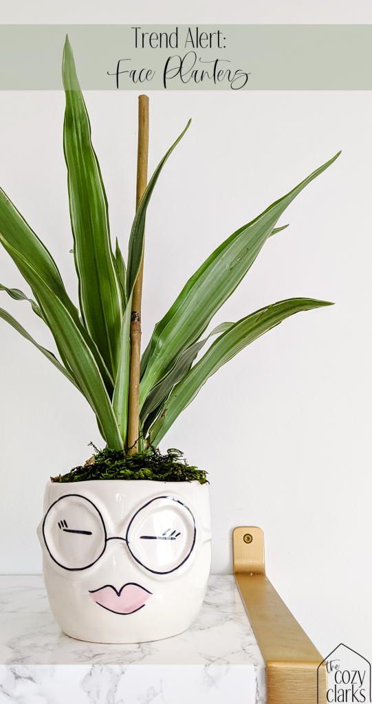 I've been noticing face planters everywhere I go! It's no surprise that they're trendy—these cute little faces are whimsical, fun, and sweet! Click for a round up of the best face planters, vases, and pots.