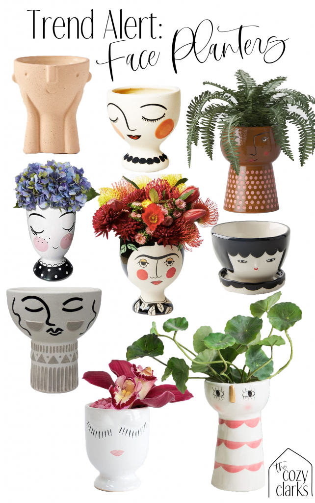 I've been noticing face planters everywhere I go! It's no surprise that they're trendy—these cute little faces are whimsical, fun, and sweet! Click for a round up of the best face planters, face vases, and face pots.
