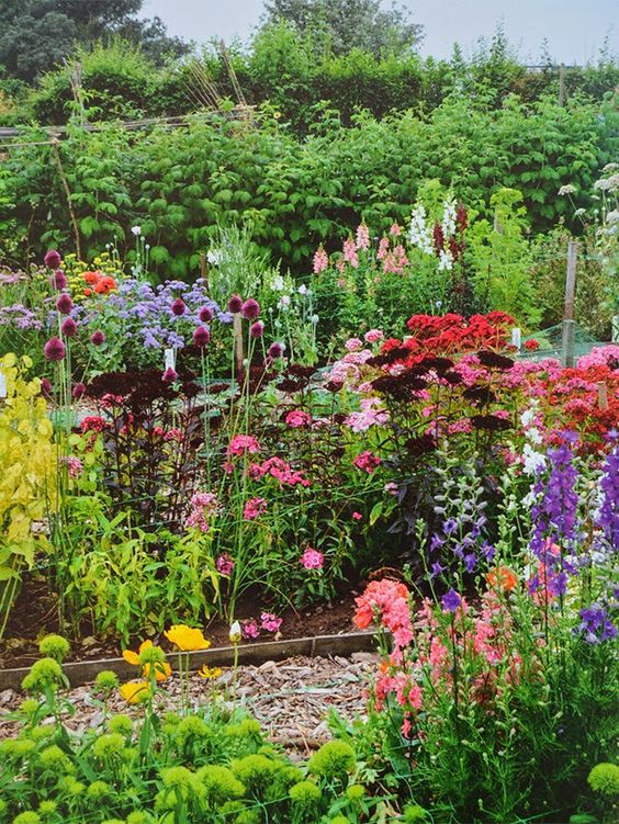 A beautiful, inspiring cut flower garden—this and more garden inspiration today on the blog!