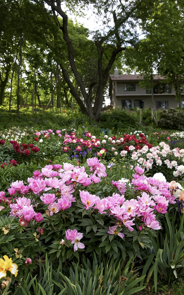 What a lovely field of flowers. Click through to the blog for even more garden inspiration!